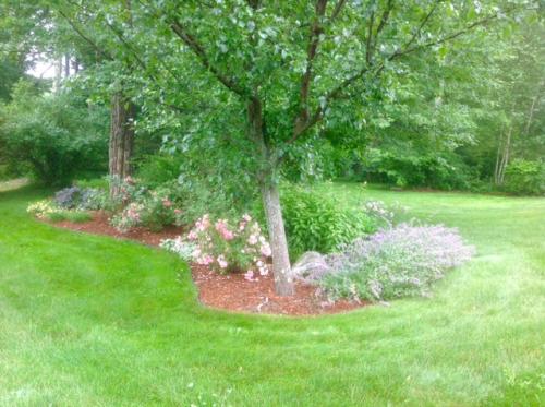 SGC, Joan S Gardens planter