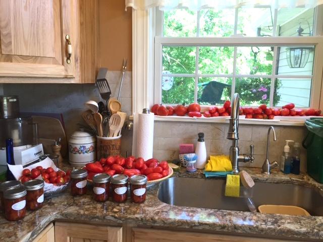 SGC_Tomatoes,kitchen,9,16